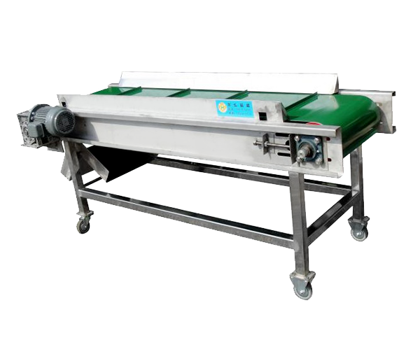 BELT CONVEYOR MAGNETIC SEPARATOR
